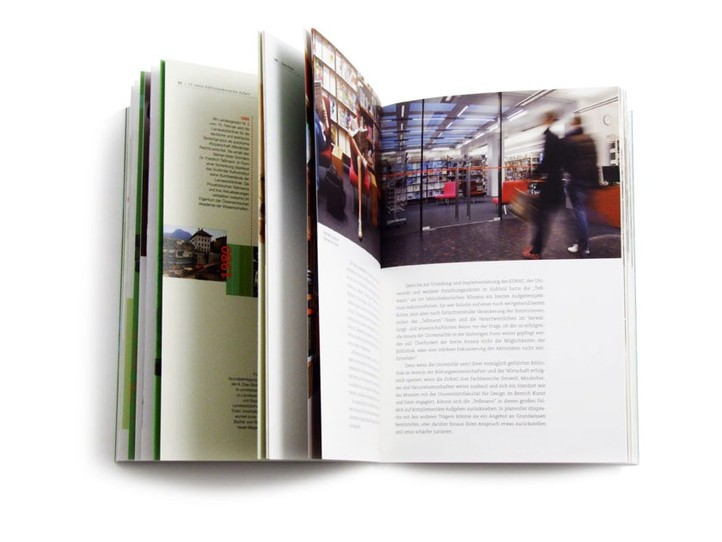 Monografia / Monograph