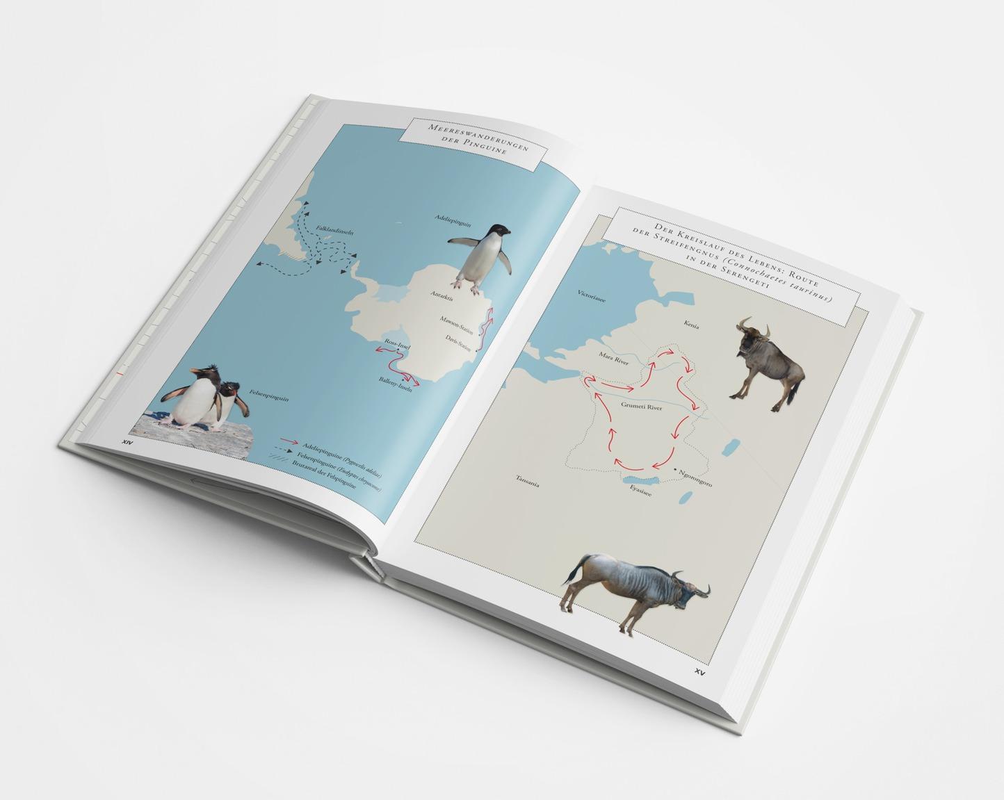 Mappe / Maps